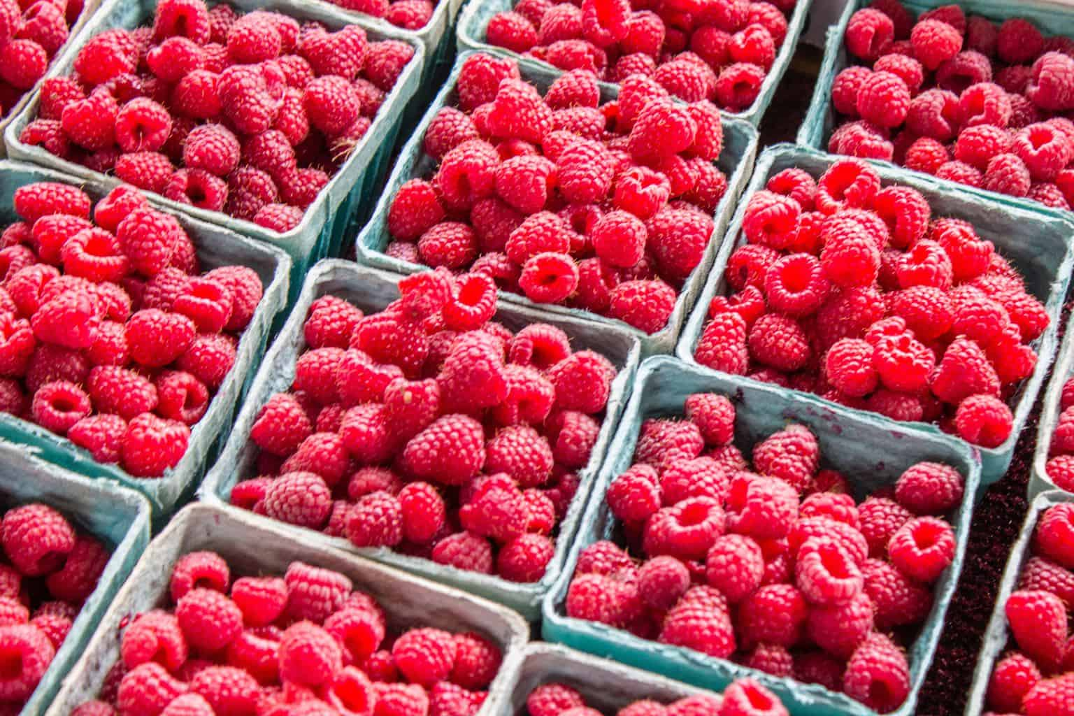 Do Raspberry Ketones Really Work For Weight Loss