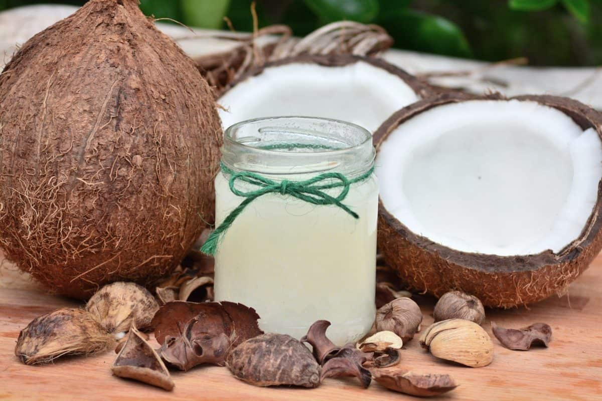 How Effective is Coconut Oil for Weight Loss?