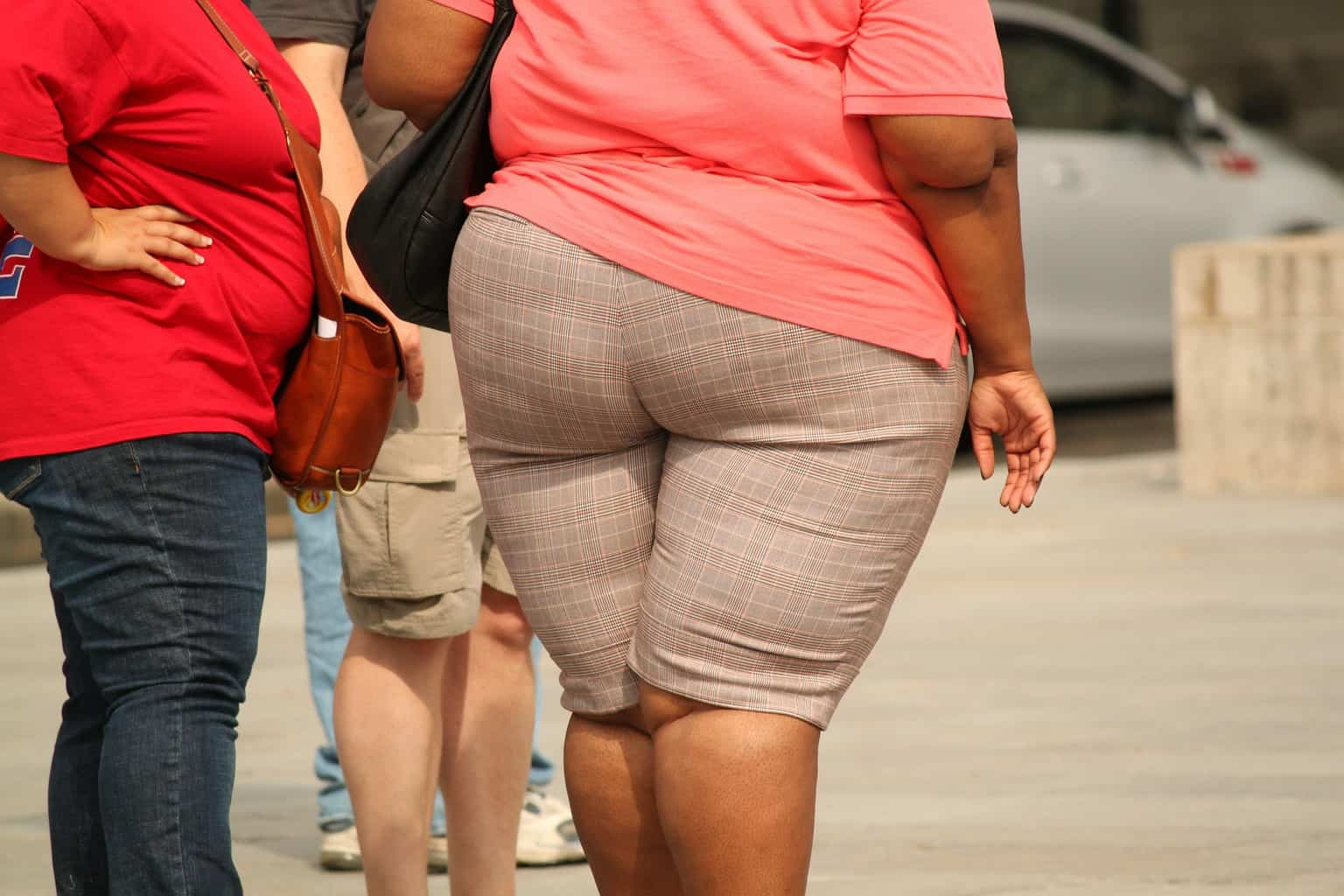 Defining Overweight and Obesity - Causes, Consequences, and Tips