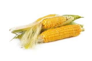 Consuming Corn to Shed Extra Pounds